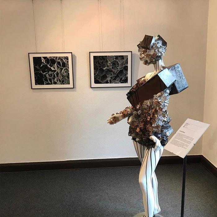 Elena Büchel Events und Ausstellungen